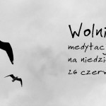 13Ndz_Zw_C_Wolni